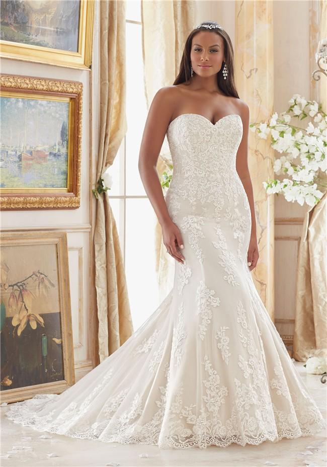 Großzügig Elegant Plus Size Wedding Gowns Zeitgenössisch ...