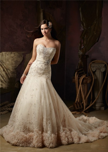 Fairy a line strapless champagne color tulle lace beaded for Champagne color wedding dresses