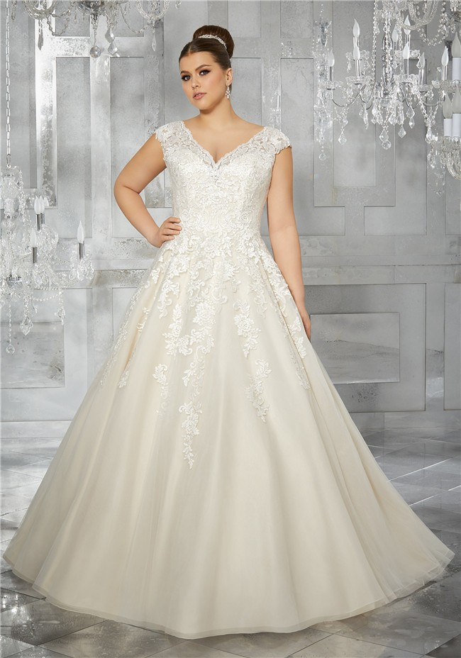 cbc40695aef Princess A Line V Neck Cap Sleeve Organza Lace Plus Size Wedding Dress