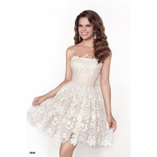 Cute Strapless Short Ivory Venice Lace Party Prom Dress With Sash