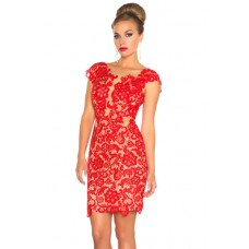 Sexy Sheath Illusion Neckline Cap Sleeve Backless Short Red Lace Party Prom Dress